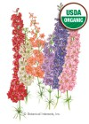 Larkspur Galilee Blend Organic Seeds