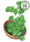 Baby Greens Superfoods Seeds (LG)